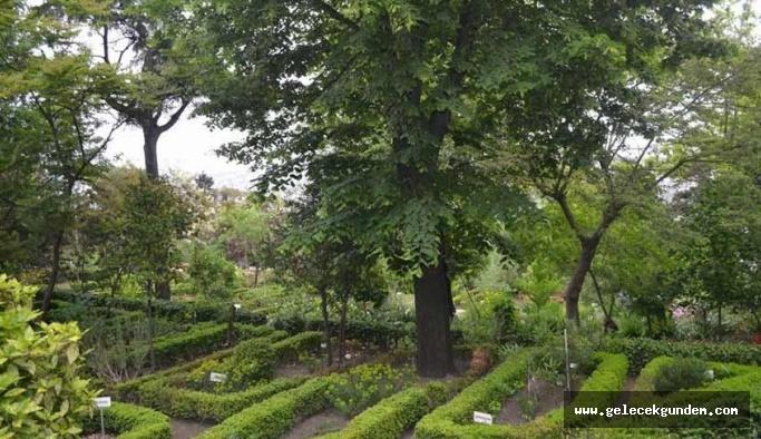 Atatürk'ün kurduğu botanik bahçesini  sessiz sedasız Diyanet'e verdiler