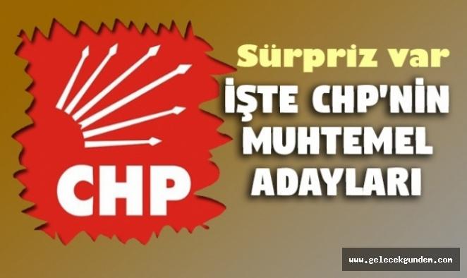 CHP'nin İstanbul ve ilçe adayları !!