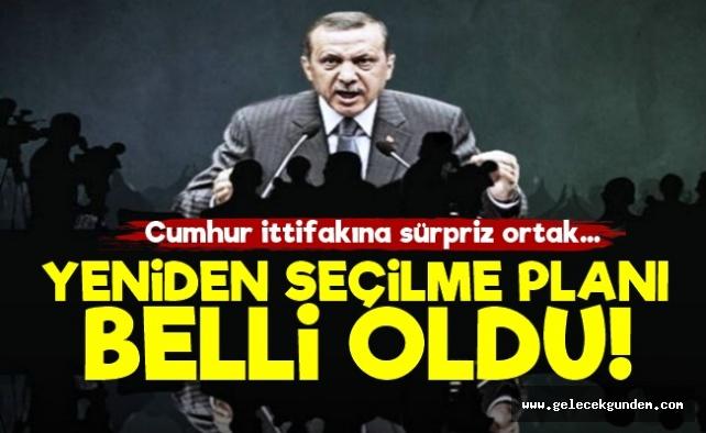 Erdoğan'ın Yeniden Seçilme Planı!