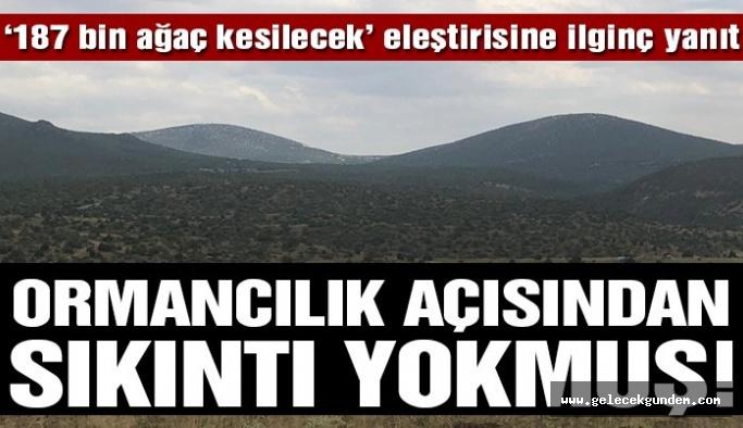 Eskişehir'de 187 bin 225 ağacın kesileceği proje için tartışılan rapor