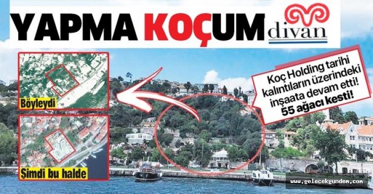 Beşiktaş'ta Kurul durdurdu, Koç Holding umursamadı! Tarihi alanda 14 türde 55 ağaç kestiler.
