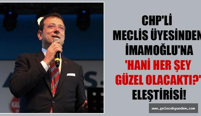CHP'li meclis üyesinden İmamoğlu'na 'Hani her şey güzel olacaktı?' eleştirisi!