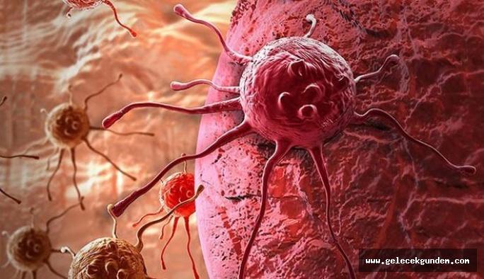 Kan Kanseri Belirtileri