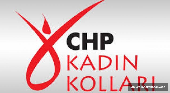 CHP İSTANBUL İL BAŞKANLIĞI KADIN KOLLARINDAN AÇIKLAMA !