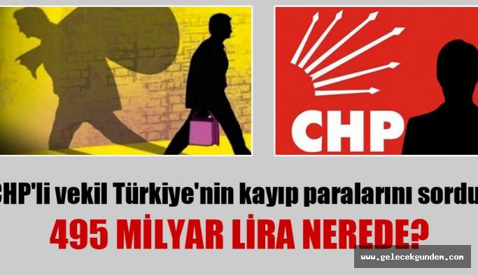 CHP'li vekil Türkiye'nin kayıp paralarını sordu: 495 milyar lira nerede?